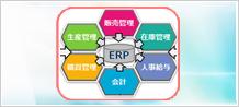 ERP導入・開発  ※SAP含む
